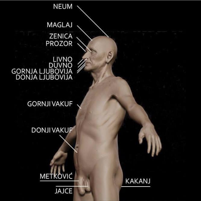 balkanska-anatomija