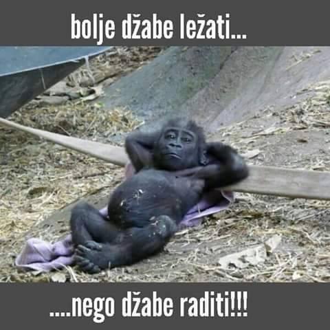 dzabe